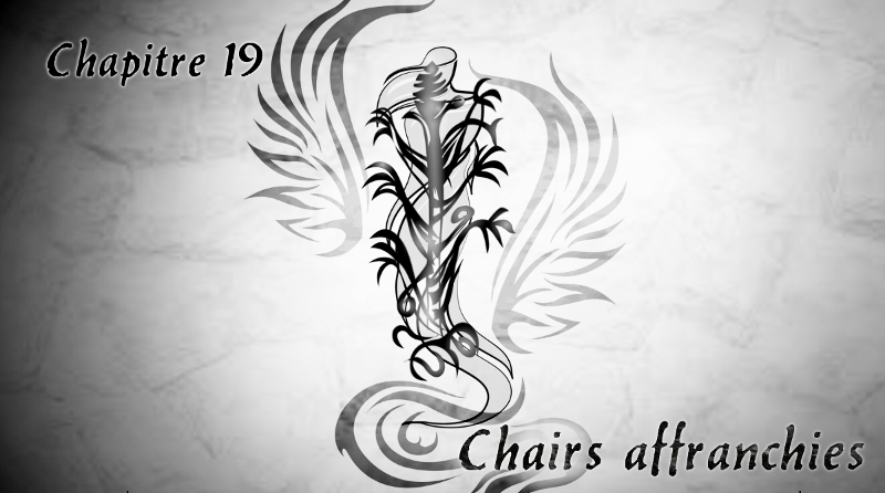"Chapitre 19 ""Chairs affranchies"""